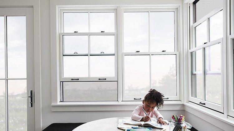 Portas e janelas sustentáveis se abrem para preservação ambiental