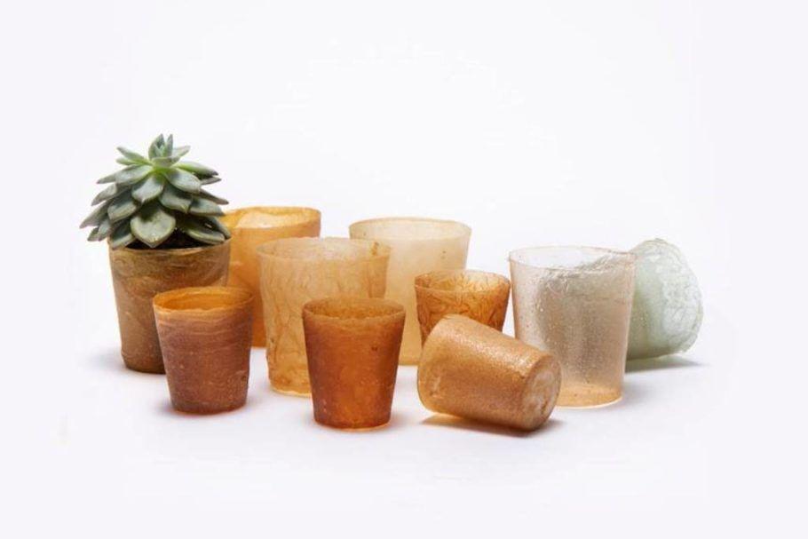 Plástico de restos de frutos do mar compõe vasos e embalagens